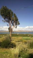 カジ 公式ブログ/ボリビアの綺麗な写メ。 画像1