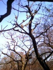 車田つかさ 公式ブログ/春の足音☆ 画像1