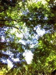車田つかさ プライベート画像 緑のトンネル☆