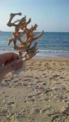 小林梨沙 公式ブログ/実は沖縄でした 画像1