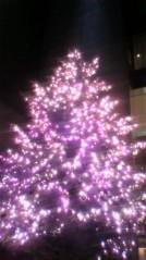 奥山あゆみ 公式ブログ/ クリスマスツリーと日本酒(笑) 画像1