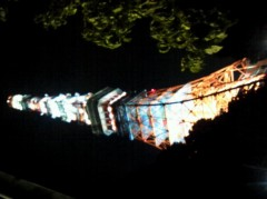 奥山あゆみ 公式ブログ/夜景って… 画像2
