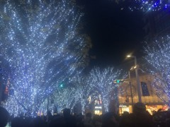奥山あゆみ(辻本) 公式ブログ/あっという間に!! 画像1