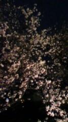 奥山あゆみ 公式ブログ/桜とスペイン料理♪ 画像2