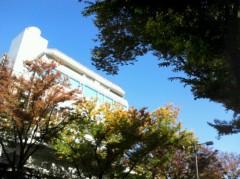 奥山あゆみ 公式ブログ/紅葉かな。 画像1