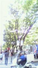 奥山あゆみ 公式ブログ/木漏れ日 画像1