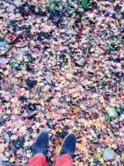 Cris プライベート画像/景色 紅葉狩り
