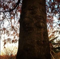 Cris 公式ブログ/公園 画像3