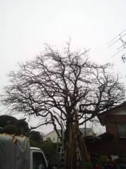 佐藤太三夫 公式ブログ/雨 画像3