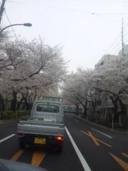 佐藤太三夫 公式ブログ/中野 桜 2 画像3