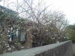 佐藤太三夫 公式ブログ/天気がいいから 画像1