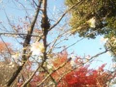 佐藤太三夫 公式ブログ/もう一本 画像1