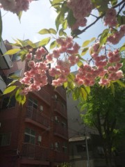佐藤太三夫 公式ブログ/天気いい 画像2