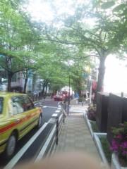 佐藤太三夫 公式ブログ/並木が歩きやすく 画像1