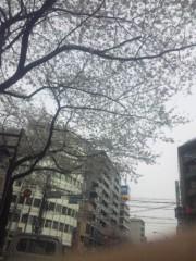 佐藤太三夫 公式ブログ/桜 中野 1 画像1