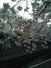 佐藤太三夫 公式ブログ/撮っても撮っても 画像1