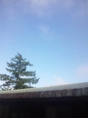 佐藤太三夫 公式ブログ/天気がいいです 画像3