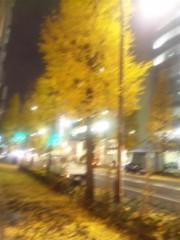 佐藤太三夫 公式ブログ/黄色い銀杏 画像1