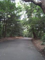 佐藤太三夫 公式ブログ/明治神宮 画像1