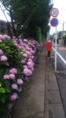 佐藤太三夫 公式ブログ/梅雨入りしました 画像2