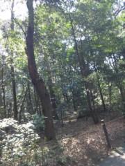 佐藤太三夫 公式ブログ/高いどこにも 画像2