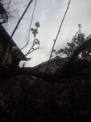 佐藤太三夫 公式ブログ/春の予感? 画像1