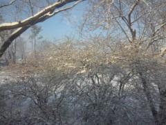 佐藤太三夫 公式ブログ/雪 画像1