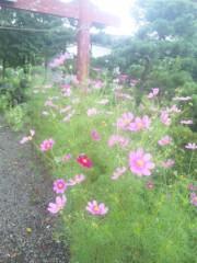 佐藤太三夫 公式ブログ/町を歩いていたら 画像3