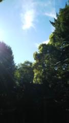 佐藤太三夫 公式ブログ/今日は明治神宮で 画像2