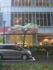 佐藤太三夫 公式ブログ/銀座は華が 画像3