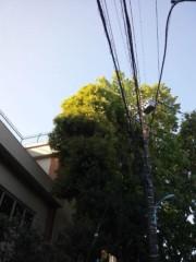 佐藤太三夫 公式ブログ/今日も天気がいい 画像3