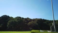 佐藤太三夫 公式ブログ/今日は明治神宮で 画像3