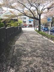 佐藤太三夫 公式ブログ/日差しが 画像2