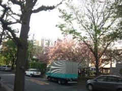 佐藤太三夫 公式ブログ/甘酒横丁に行く手前の 画像1