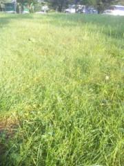 佐藤太三夫 公式ブログ/山と草に露 画像1