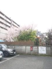 佐藤太三夫 公式ブログ/さくらが 画像3