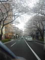 佐藤太三夫 公式ブログ/中野 桜 3 画像1