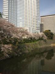 佐藤太三夫 公式ブログ/赤坂見附の桜 画像1