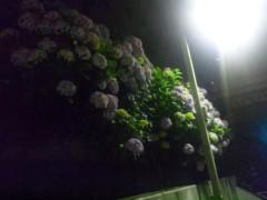 佐藤太三夫 公式ブログ/ライトに照らされる 画像2