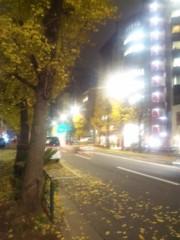 佐藤太三夫 公式ブログ/黄色い銀杏 画像2