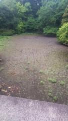 佐藤太三夫 公式ブログ/明治神宮内にある池です 画像1