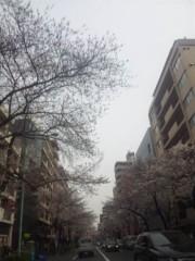 佐藤太三夫 公式ブログ/桜 中野 1 画像2
