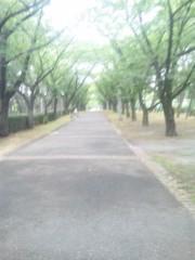 佐藤太三夫 公式ブログ/辰巳公園 画像1