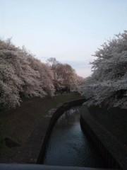 佐藤太三夫 公式ブログ/撮っても撮っても 画像3