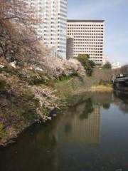 佐藤太三夫 公式ブログ/赤坂見附の桜 画像2