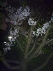 佐藤太三夫 公式ブログ/いいな このまま 画像2