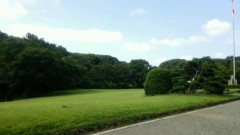 佐藤太三夫 公式ブログ/今日は遠的、明治神宮に 画像1