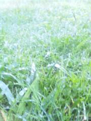 佐藤太三夫 公式ブログ/天気がいいです 画像1
