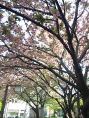 佐藤太三夫 公式ブログ/甘酒横丁に行く手前の 画像2