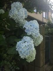 佐藤太三夫 公式ブログ/白からアイスブルー 画像2